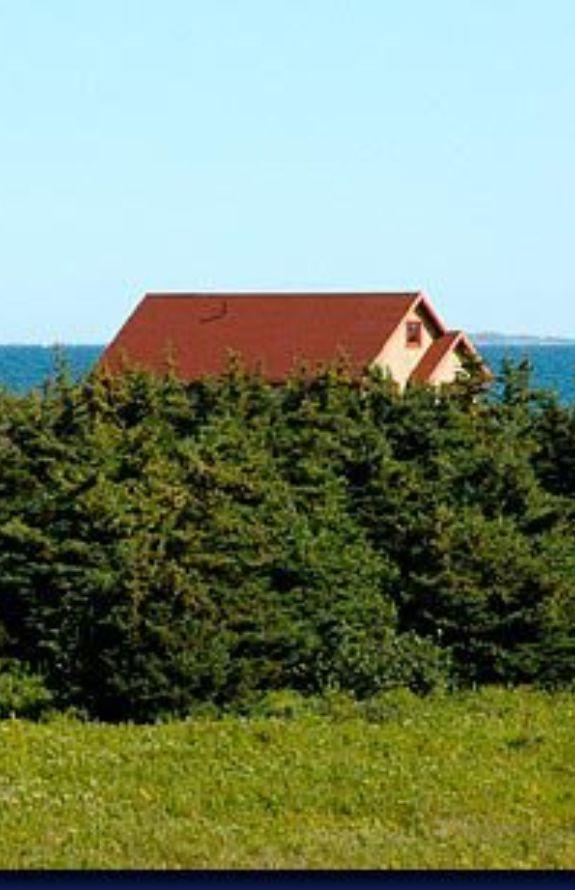 La Maison Au Bord Des Dunes -
